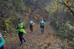 Donautalmarathon 2020_102