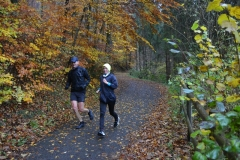 Donautalmarathon 2020_110