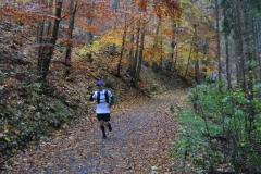 Donautalmarathon 2020_114