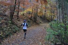 Donautalmarathon 2020_115
