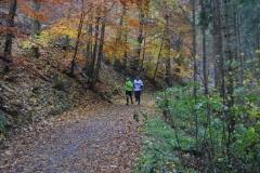 Donautalmarathon 2020_117