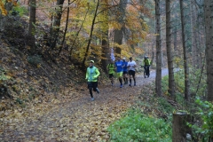 Donautalmarathon 2020_125