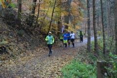 Donautalmarathon 2020_126